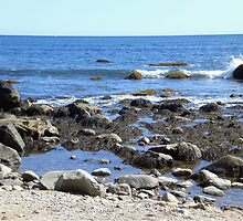 Rocky Beach by introspectionx