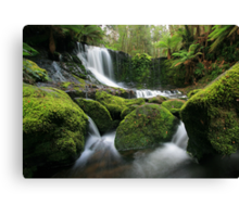 Horseshoe falls Canvas Print