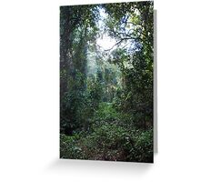 Harrington Rainforest Greeting Card