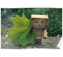 Danbo in green Poster
