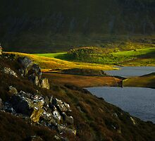 Automn Colours, Snowdonia by Thomas Peter