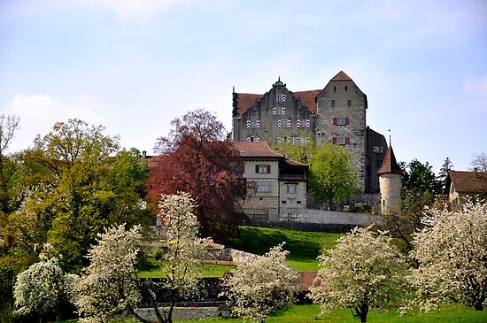 Castle Wildegg at Spring by Rosy Kueng