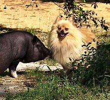 Miss Piggy & Bubba Gump by bamagirl38