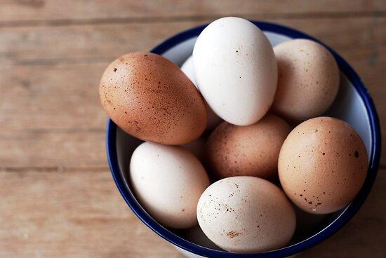 eggs by sapaho
