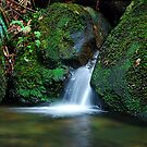 Waterfall - Megalong Valley NSW by Bev Woodman