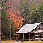 Cades Cove Cabin by WTBird