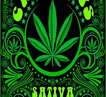 CANNABIS SATIVA by GUS3141592