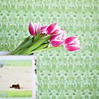 Tulips by AndreaMcClain