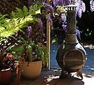 On my Old Patio by Evita