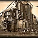 Recluse Mill by sundawg7