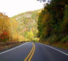 Delaware Water Gap Mts. Pennsylvania by Ruth Lambert