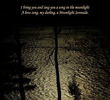 A Moonlight Serenade by artisandelimage