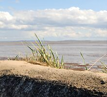 Ribble Estuary by aejharrison