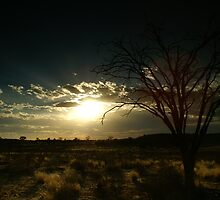 Kalahari Sunset by Thomas Peter