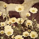 Vintage Daisy  by ginaellen