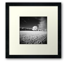 Holga Infrared Tree #7 Framed Print