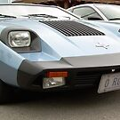 A  MARCOS................sweet.......and........Rare..... by Larry Llewellyn