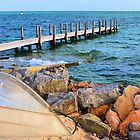 Shark Bay Jetty by Rochelle Boardman