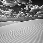 Monahans Sandhills State Park, Texas by Jeff Blanchard
