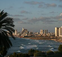 From Jaffa to Tel- Aviv by Nira Dabush