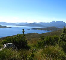 View to Lake Pedder #2 from Red Knoll Lookout by Marilyn Harris