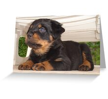 The Rottweiler Sphinx Greeting Card