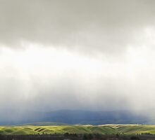I-5 in Spring by harleyphoto