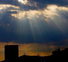 Rays by naranzaria