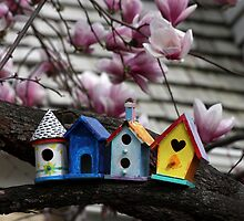 Birdhouses by Maryna Gumenyuk