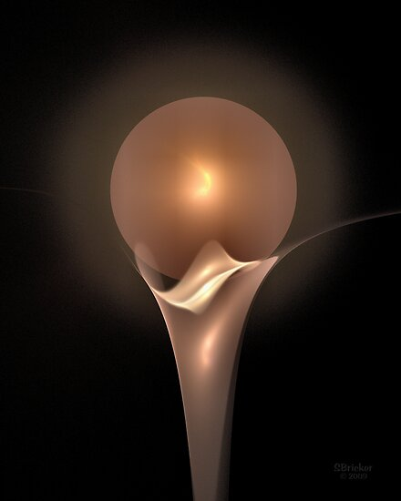 'Orchid and Orb 2' by Scott Bricker