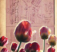 [ passeport ] by Jaden Rogers