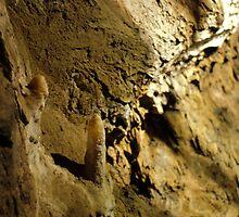 Marakoopa Caves by Derrick Chan