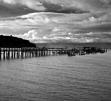 Teluk Bahang Penang Malaysia  by MiImages