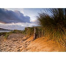 Instow Sand Dune Photographic Print