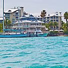 Graceful Living In Key West by Memaa