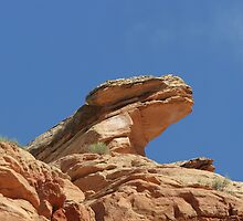 Nine Mile Canyon, Utah - one of America's most endangered places by Christine Till  @    CT-Graphics
