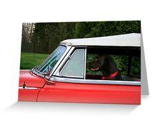 DOG GONE DRIVER Greeting Card