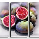 Fig Triptych by Danielle Knight