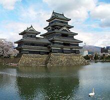 Beware the Swan! - Matsumoto, Japan by aerdeyn