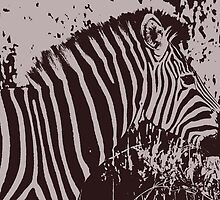 Safari - Graphic Zebra by rabeeker