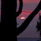Frame the Sunset by LNara