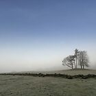 Trees in the Mist by Bill Crookston