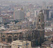 Catedral de la Encarnación, Málaga (2004)  by Allen Lucas