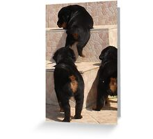 I Believe I Can Climb Greeting Card
