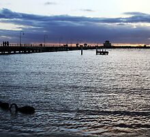 St. Kilda pier swans  by JHP Unique and Beautiful Images