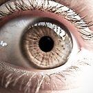 The eye of wonders by Adara Black