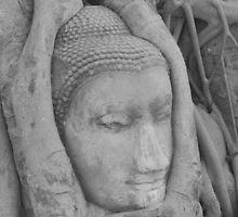 Thai Buddha, Wat Mahathat, Ayutthaya by Kate Harriman