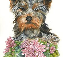 Yorkshire Terrier by morgansartworld