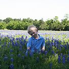 in the Bluebonnets by Lee Anne Kortus