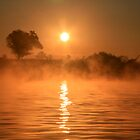Sunrise on the Nile by Julia Sian